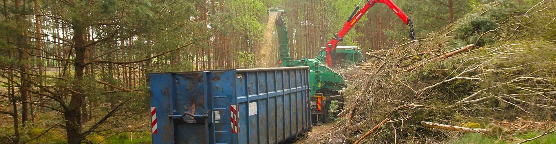 Alle Leistungen rund um Baumfällung und Baumpflege