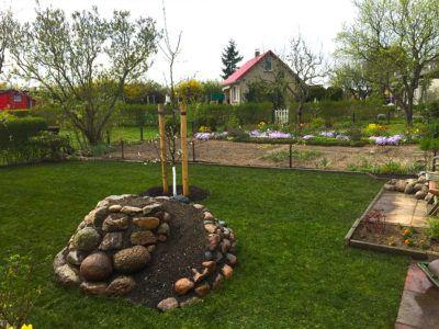 Gartenpflege mit grünem Rasen und Steinen