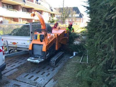 Schwere Maschinen zur Zerlegung von Bäumen